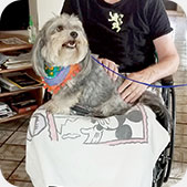 Paw Pals Dog Therapy