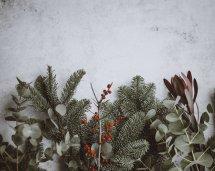 san-fernando-valley-holidays
